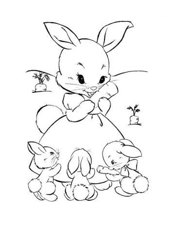 Immagini coniglietti