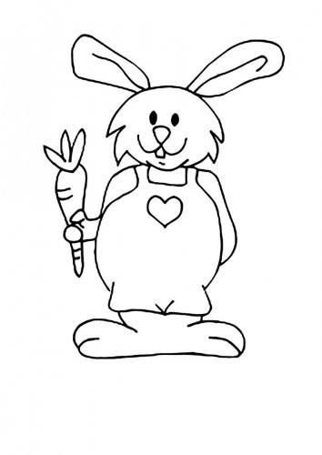 Immagini coniglio