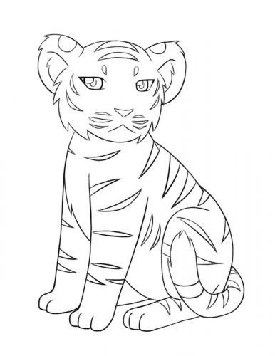 immagini cuccioli tigre