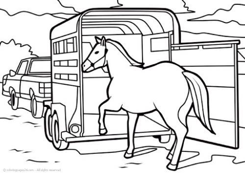 immagini da colorare cavalli