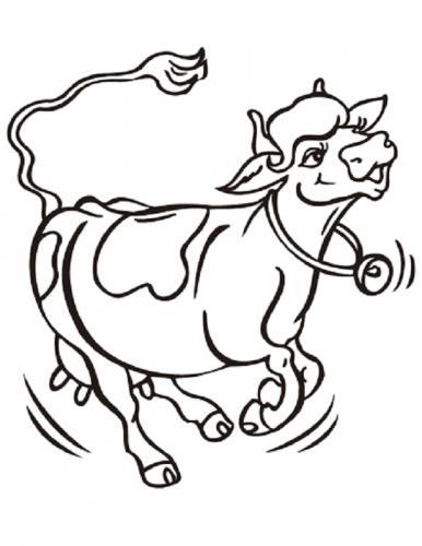 mucca che corre