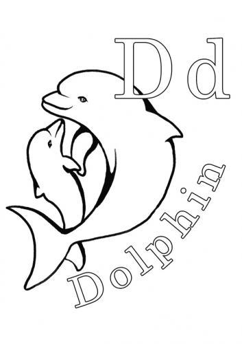 immagini delfini da colorare