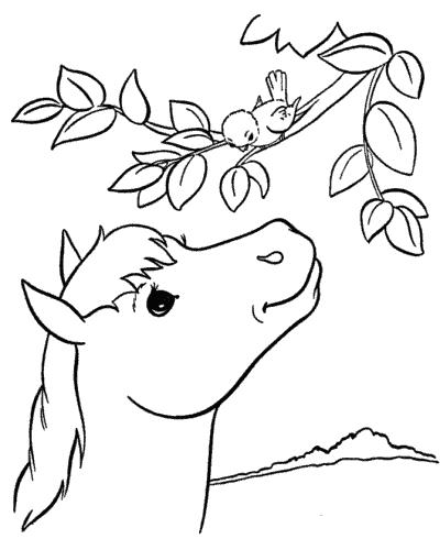 immagini di cavalli da stampare e colorare