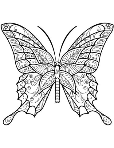 immagini di farfalle bellissime
