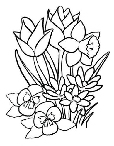 immagini di fiori da colorare e stampare