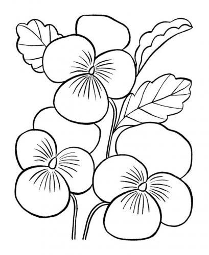 immagini di fiori da stampare
