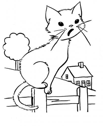 immagini di gatti da stampare