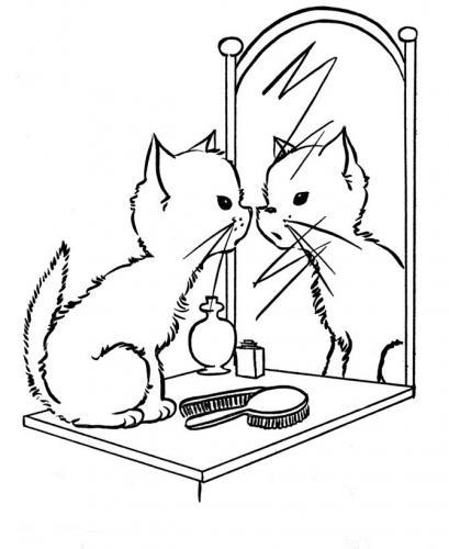 immagini di gattini dolci