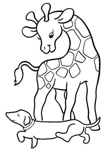 immagini di giraffe pdf gratis