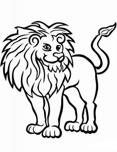 immagini di leone