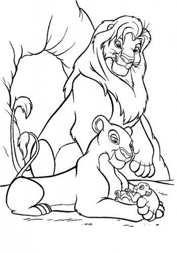 immagini di leoni e leonesse