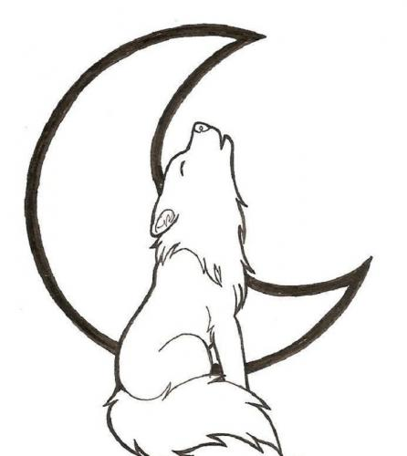 immagini di lupo da disegnare