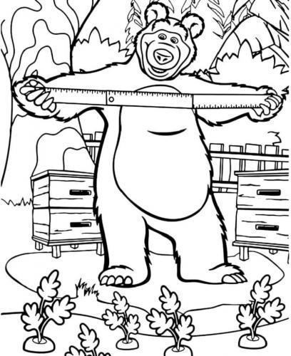 Orso in giardino con un metro