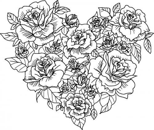 rose a forma di cuore