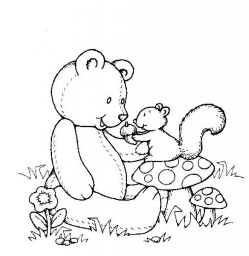 immagini di orsetti da colorare