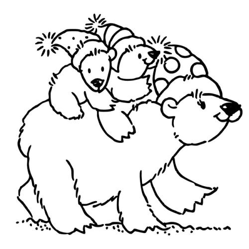 immagini di orsi