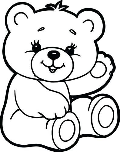 immagini di orso