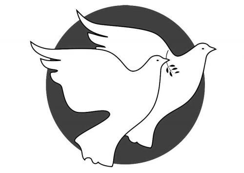 coppia di colombe