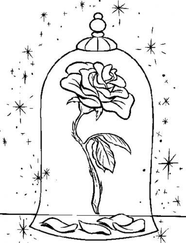 rosa in una campana