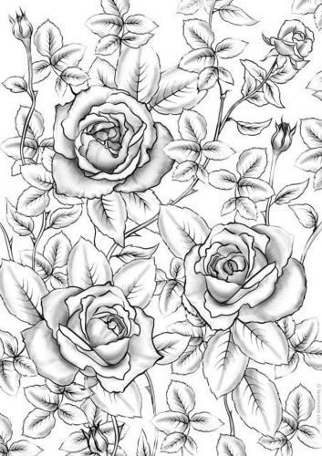 disegno raffinato di rose