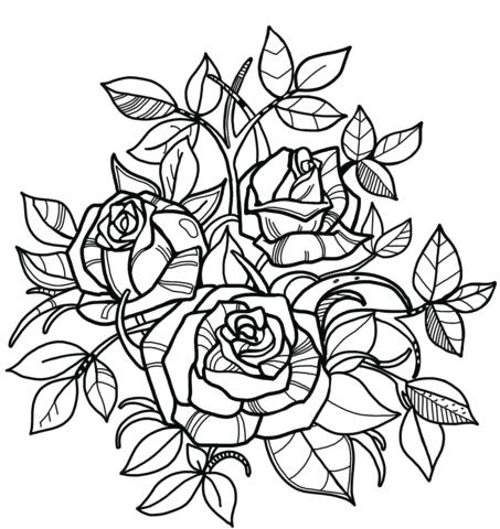 immagini di rose da disegnare