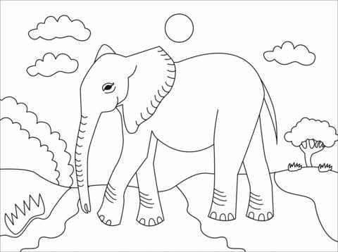 immagini elefanti per bambini
