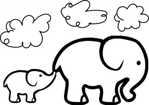 immagini elefanti