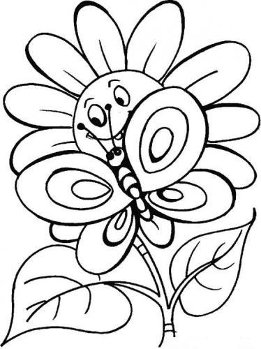 immagini farfalle e fiori