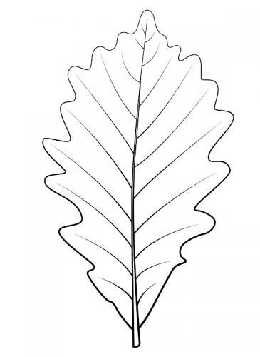 immagini foglie da colorare