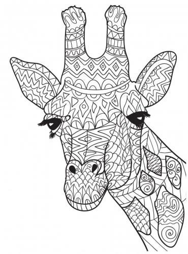 immagini giraffe divertenti da scaricare pdf