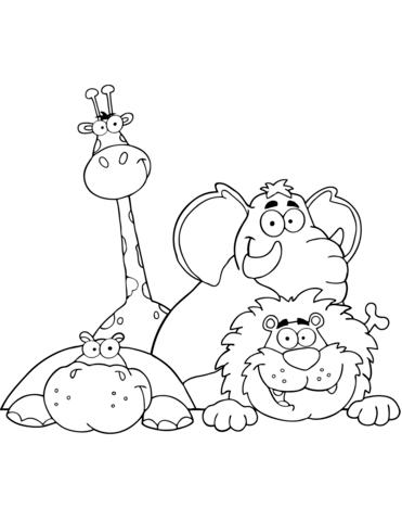 immagini giraffe divertenti