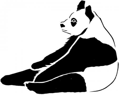 immagini panda divertenti