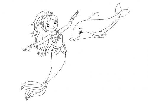 immagini sui delfini