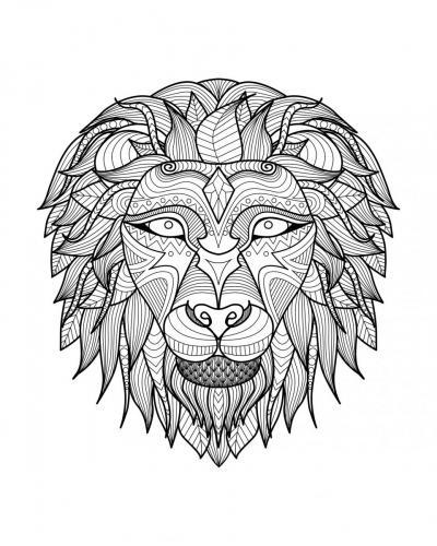 leone disegno stilizzato
