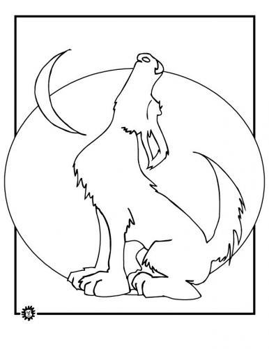 lupo disegni