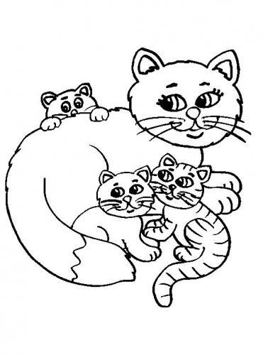 mamma gatto con i cuccioli