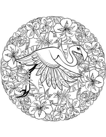 mandala disegno fenicottero