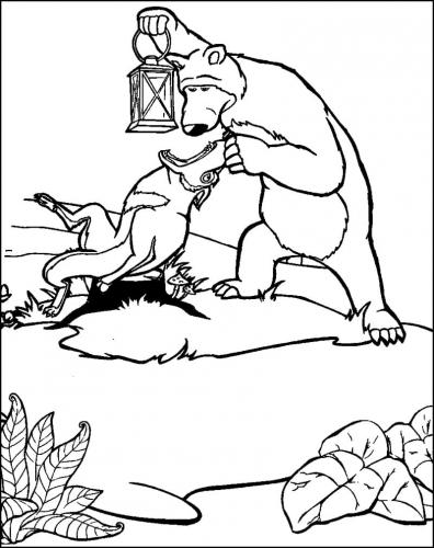 Orso guarda nella gola del lupo