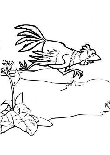 Il gallo di Masha e Orso in giardino