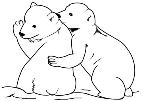 orsetti da disegnare