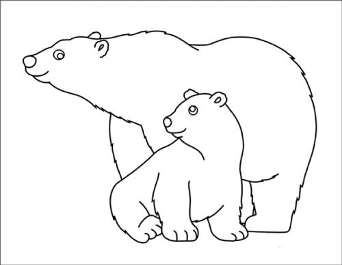 orsi disegni
