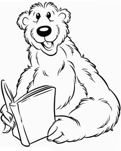 orso disegni