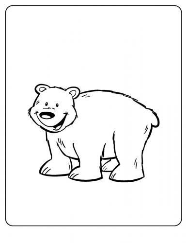 orso disegno