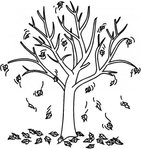 disegno albero senza foglie