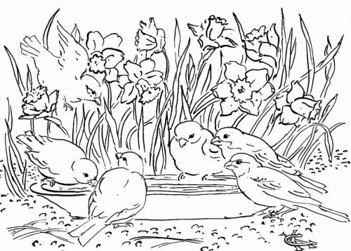 immagine di uccellini tra i fiori