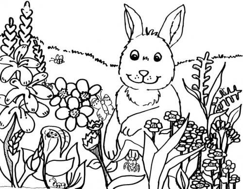 coniglietto sul prato fiorito
