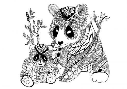 panda disegni