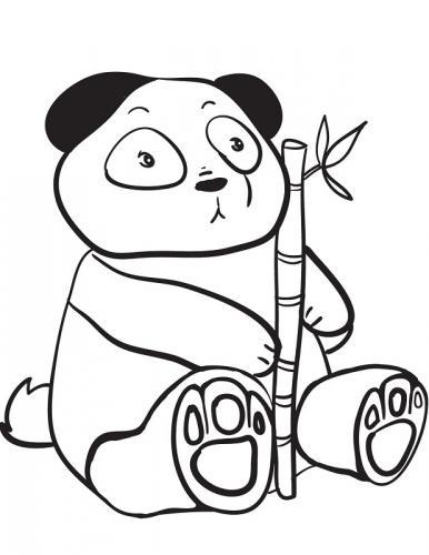 panda immagine