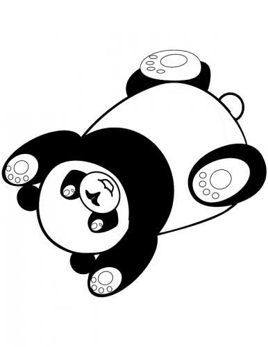 panda immagini
