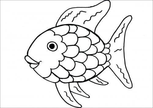 pesce felice